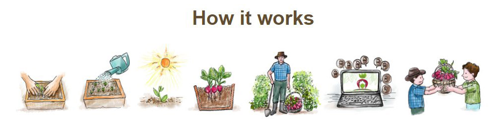 How does Home Farmers work
